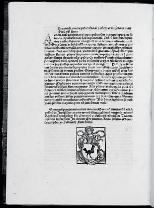 Erhard Reuwich – Printer's Mark from Peregrinatio Latin, fol. 163v.