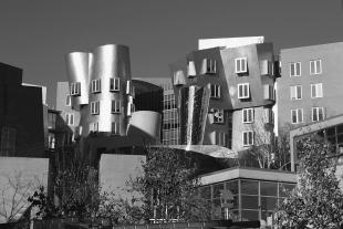 Stata Center, MIT. Designed by Frank Gehry