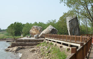 Rocks after the 2010 excavation at Jiaoshan